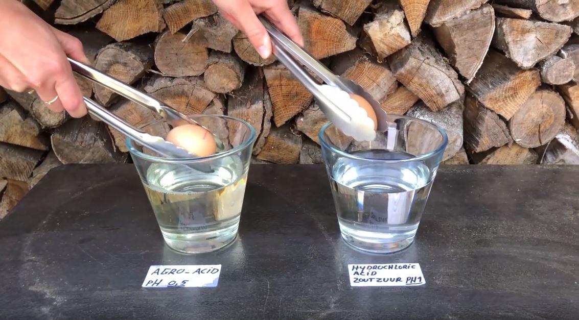Proef: kalk oplossen met PHC AgroAcid