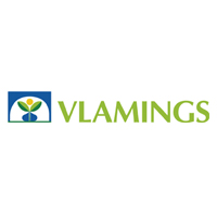 Vlamings BV